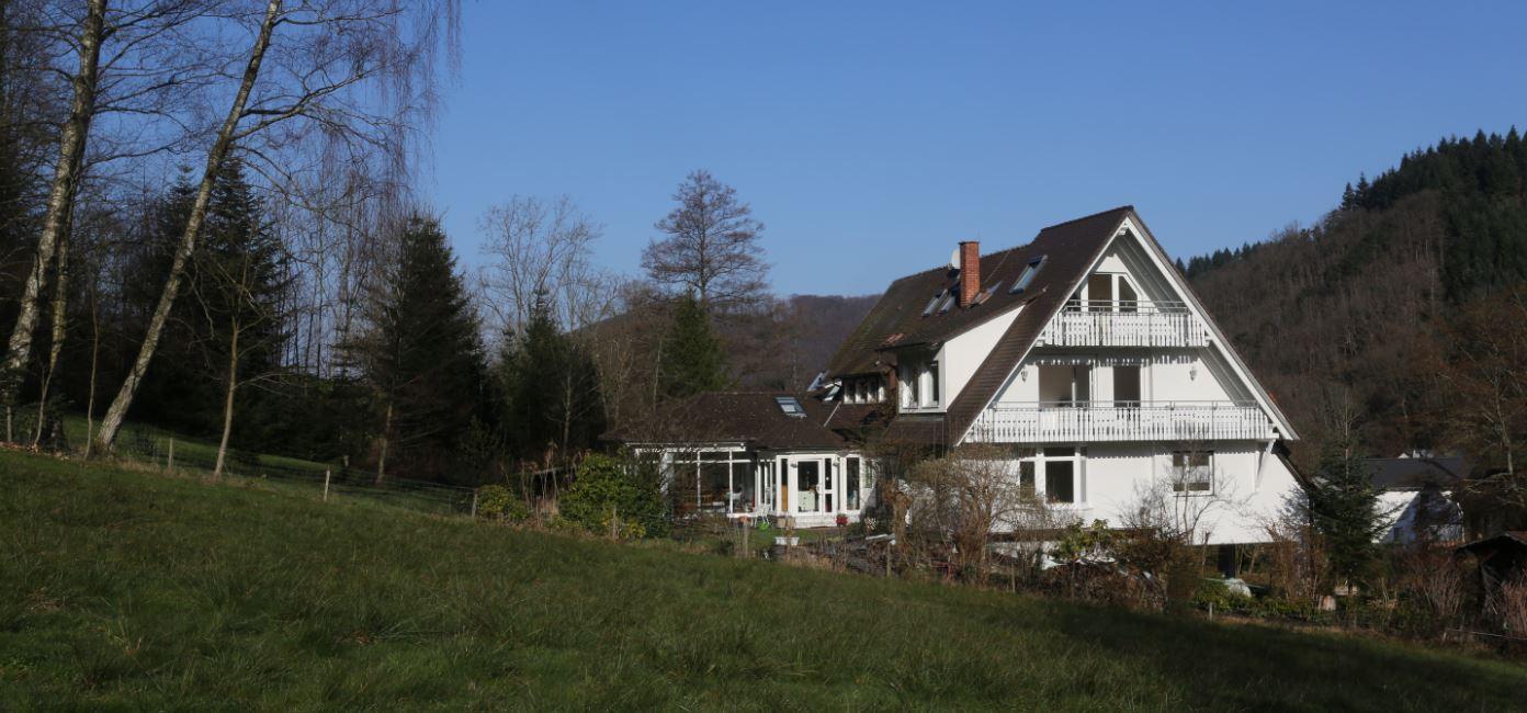 Haus von der Hangseite
